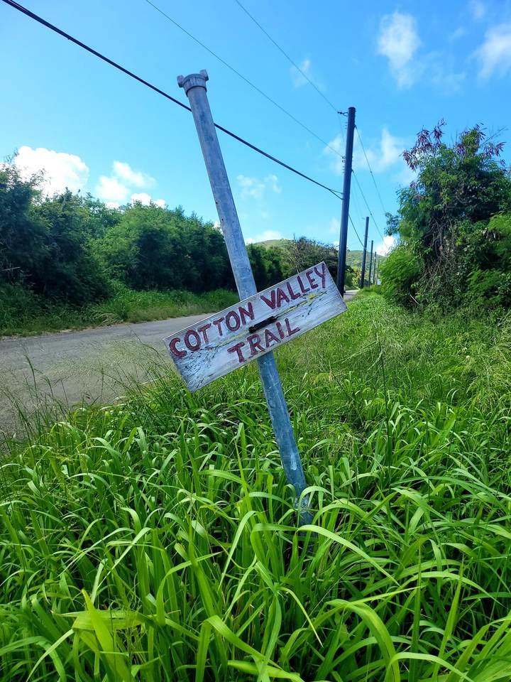 266 A Cotton Valley Eb - Photo 1