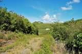 85C South Grapetree Eb - Photo 4
