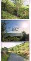 35-B Water Island Ss - Photo 3