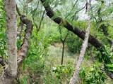 71 Green Cay Ea - Photo 4