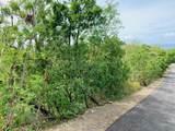 71 Green Cay Ea - Photo 5