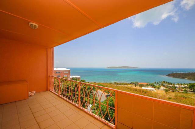 1 & 2 Coakley Bay Eb, St. Croix, VI  (MLS #18-1022) :: Hanley Team   Farchette & Hanley Real Estate