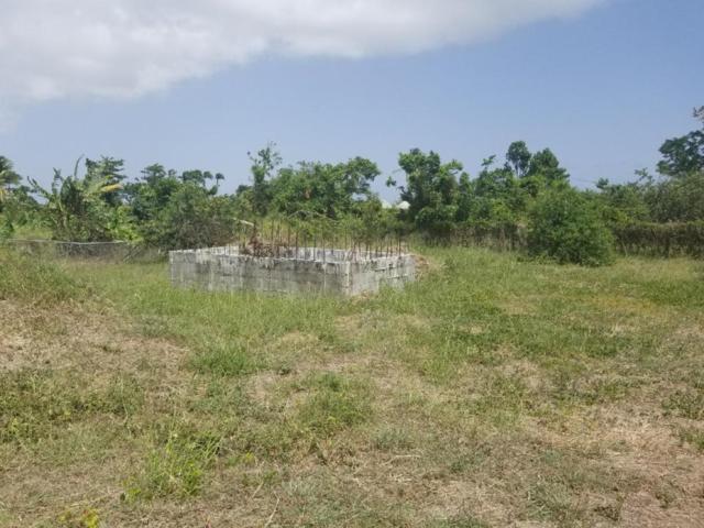 4M Upper Love Pr, St. Croix, VI 00840 (MLS #18-1039) :: Hanley Team | Farchette & Hanley Real Estate