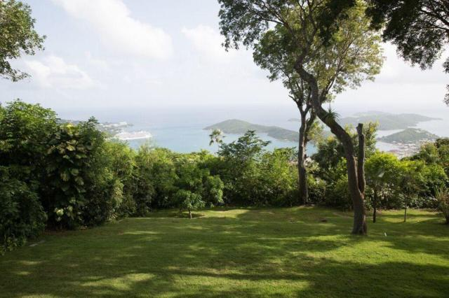 4 Address Not Published, St. Thomas, VI 00000 (MLS #18-1166) :: Hanley Team | Farchette & Hanley Real Estate