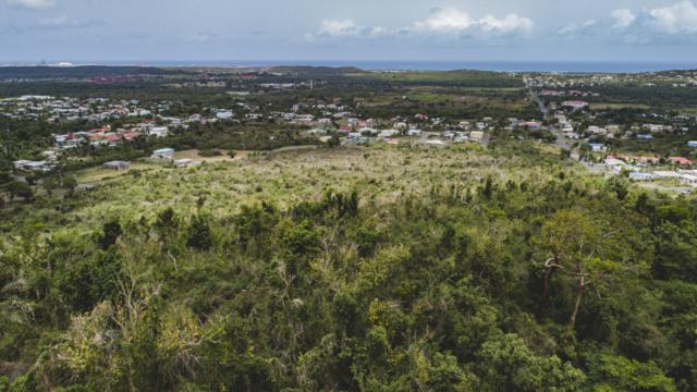 2B Upper Love Pr, St. Croix, VI 00820 (MLS #18-1210) :: Hanley Team   Farchette & Hanley Real Estate