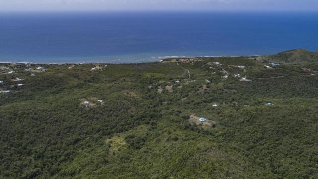 12, 14 Mt. Pleasant Nb, St. Croix, VI 00820 (MLS #18-1211) :: Hanley Team   Farchette & Hanley Real Estate