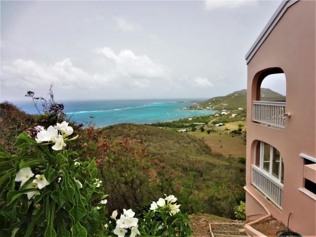 221 Cotton Valley Eb, St. Croix, VI 00820 (MLS #18-1212) :: Hanley Team | Farchette & Hanley Real Estate