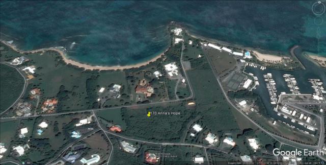 170 Anna's Hope Ea, St. Croix, VI 00820 (MLS #18-1223) :: Hanley Team   Farchette & Hanley Real Estate