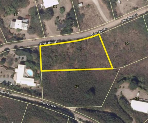 49 Hope & Carton Hill Eb, St. Croix, VI 00820 (MLS #18-1332) :: Hanley Team | Farchette & Hanley Real Estate