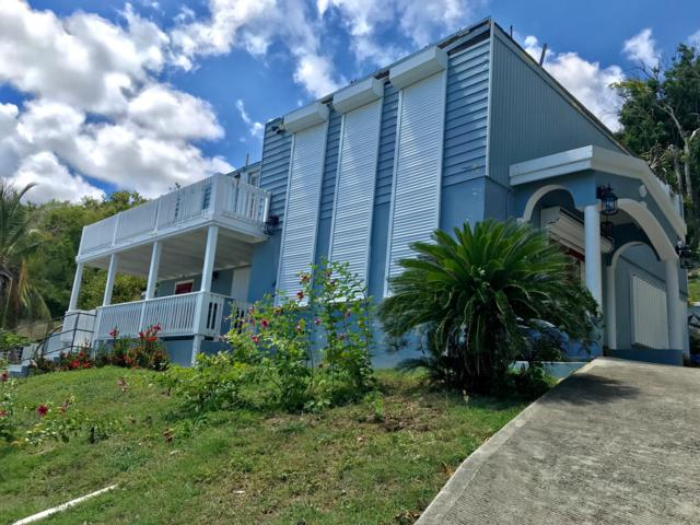 210 Anna's Retreat New, St. Thomas, VI 00802 (MLS #18-1377) :: Coldwell Banker Stout Realty