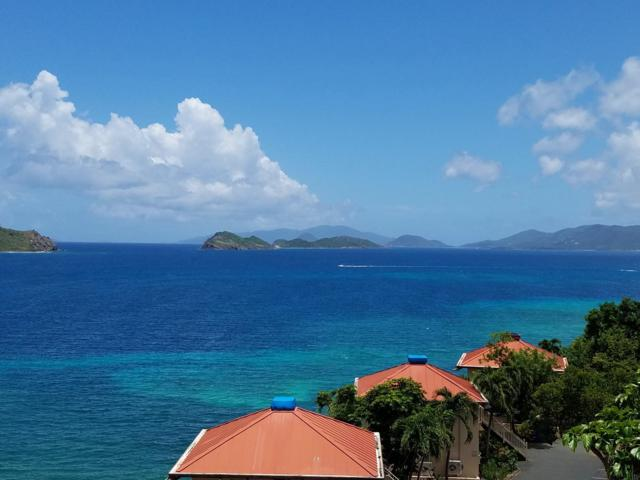 B-24 Smith Bay Ee, St. Thomas, VI 00802 (MLS #18-1391) :: Coldwell Banker Stout Realty