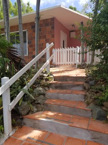 1A Thomas New, St. Thomas, VI 00802 (MLS #18-1412) :: Hanley Team | Farchette & Hanley Real Estate