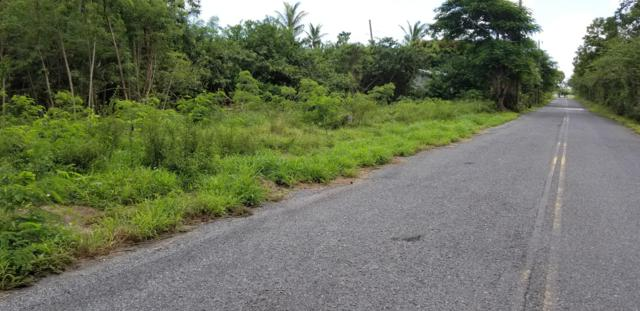 15-A Constitution Hill Co, St. Croix, VI 00820 (MLS #18-1423) :: Hanley Team | Farchette & Hanley Real Estate
