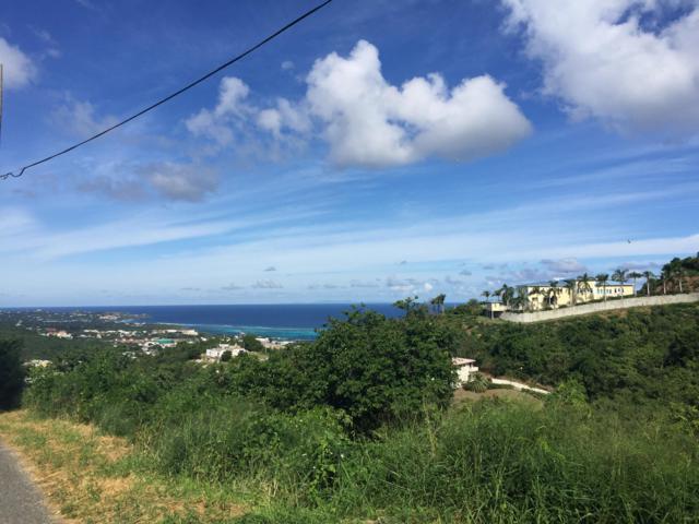 96, 97-A Hermon Hill Co, St. Croix, VI 00820 (MLS #18-1528) :: Hanley Team | Farchette & Hanley Real Estate