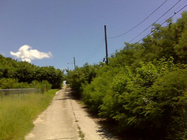 73 of 14 V.I. Corp Lands Pr, St. Croix, VI 00820 (MLS #18-1539) :: Hanley Team | Farchette & Hanley Real Estate