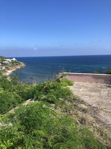 49 South Grapetree Eb, St. Croix, VI 00820 (MLS #18-1547) :: Hanley Team | Farchette & Hanley Real Estate
