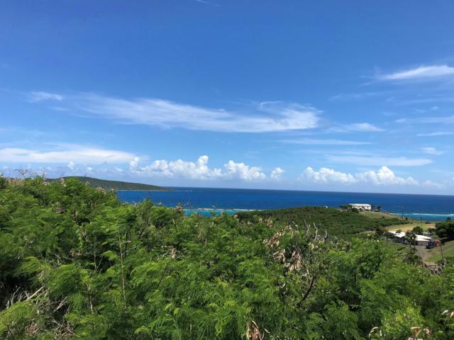 240 Cotton Valley Eb, St. Croix, VI 00820 (MLS #18-1550) :: Hanley Team | Farchette & Hanley Real Estate