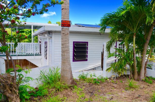 133 Clifton Hill Ki, St. Croix, VI 00850 (MLS #18-1556) :: Hanley Team | Farchette & Hanley Real Estate