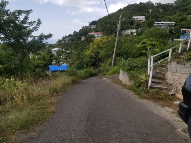 55 Upper John Dunko Lns, St. Thomas, VI 00802 (MLS #18-1557) :: Hanley Team | Farchette & Hanley Real Estate