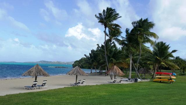 #113 Golden Rock Co, St. Croix, VI 00820 (MLS #18-1562) :: Hanley Team | Farchette & Hanley Real Estate