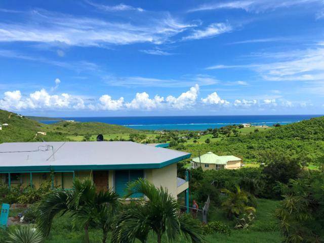30 Catherine's Hope Eb, St. Croix, VI 00820 (MLS #18-1575) :: Hanley Team | Farchette & Hanley Real Estate