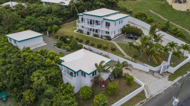 13 Green Cay Ea, St. Croix, VI 00820 (MLS #18-1582) :: Hanley Team | Farchette & Hanley Real Estate