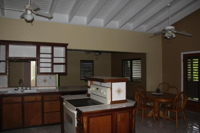 4XF Fortuna We, St. Thomas, VI 00802 (MLS #18-1585) :: Coldwell Banker Stout Realty