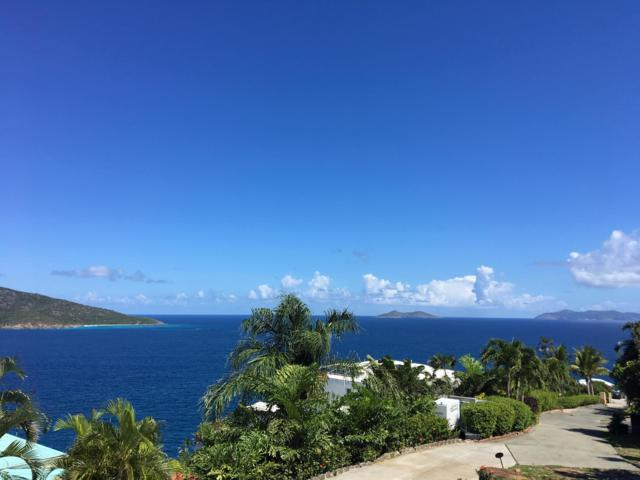 C-6-F Lovenlund Gns, St. Thomas, VI 00802 (MLS #18-1679) :: Coldwell Banker Stout Realty