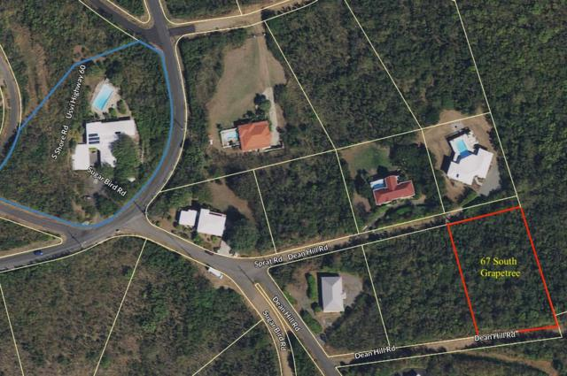 67 South Grapetree Eb, St. Croix, VI  (MLS #18-1693) :: Hanley Team | Farchette & Hanley Real Estate