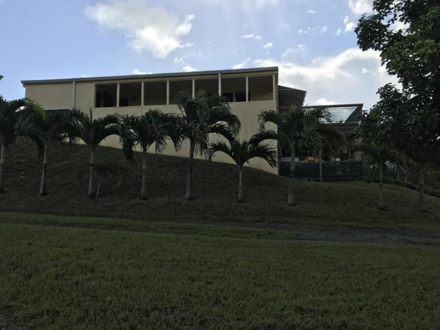 2-E Hermon Hill Co, St. Croix, VI 00820 (MLS #18-1752) :: Hanley Team | Farchette & Hanley Real Estate