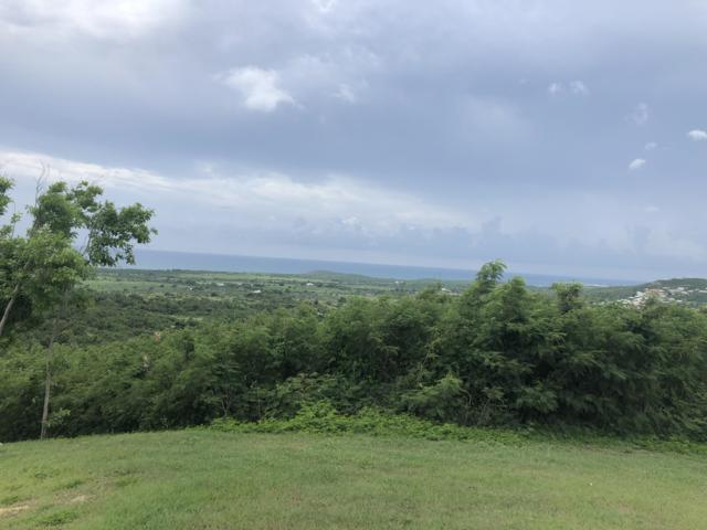 149 Bugby Hole Co, St. Croix, VI 00820 (MLS #18-1757) :: Hanley Team   Farchette & Hanley Real Estate