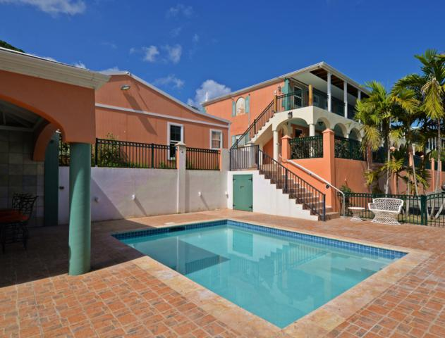 62 Salt River Nb, St. Croix, VI 00840 (MLS #18-1818) :: Hanley Team | Farchette & Hanley Real Estate