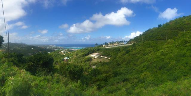 94 Hermon Hill Co, St. Croix, VI 00820 (MLS #18-1822) :: Hanley Team | Farchette & Hanley Real Estate