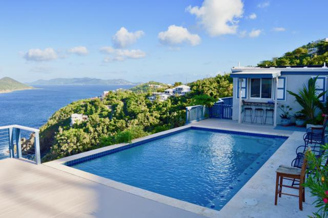 4-32 Tabor & Harmony Ee, St. Thomas, VI 00802 (MLS #18-1837) :: Coldwell Banker Stout Realty
