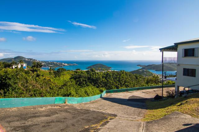 10 Solberg Lns, St. Thomas, VI 00802 (MLS #18-1853) :: Hanley Team | Farchette & Hanley Real Estate