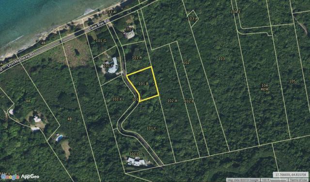101B Cane Bay Nb, St. Croix, VI 00840 (MLS #18-1856) :: Hanley Team | Farchette & Hanley Real Estate