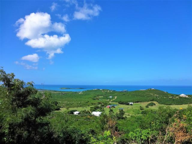 42 Seven Hills Ea, St. Croix, VI 00820 (MLS #18-1873) :: Hanley Team | Farchette & Hanley Real Estate