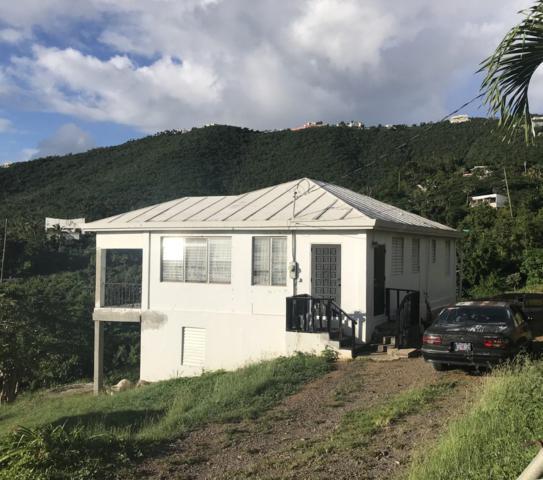14B-2 Thomas New, St. Thomas, VI 00802 (MLS #18-1875) :: Hanley Team | Farchette & Hanley Real Estate