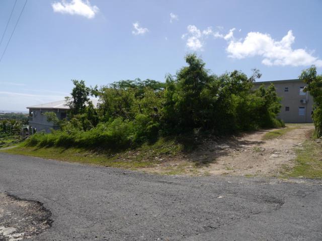 447 Barren Spot Qu, St. Croix, VI 00820 (MLS #18-1880) :: Coldwell Banker Stout Realty