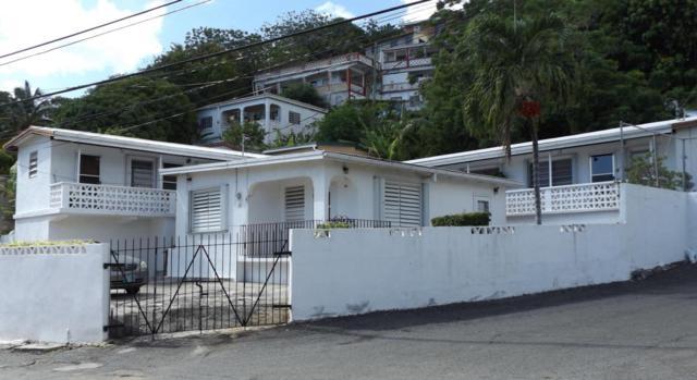 34 Anna's Fancy Kps, St. Thomas, VI 00802 (MLS #18-214) :: Hanley Team | Farchette & Hanley Real Estate