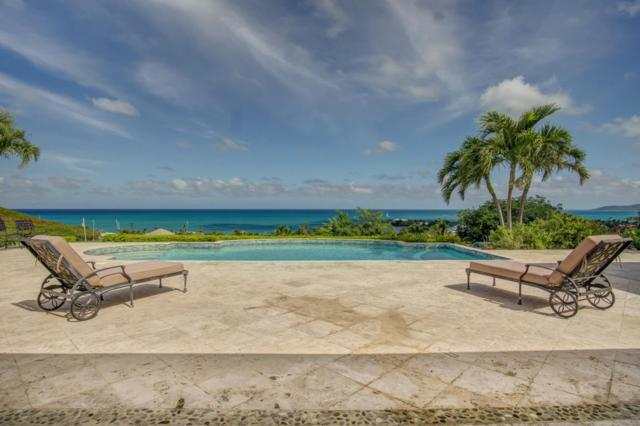 27 Anna's Hope Ea, St. Croix, VI 00820 (MLS #18-431) :: Hanley Team | Farchette & Hanley Real Estate