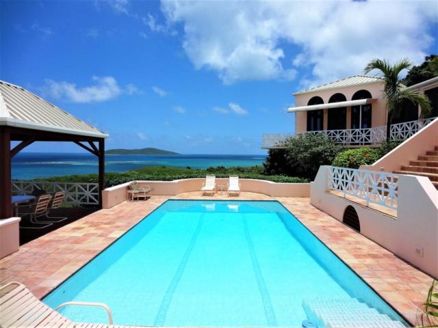 104 & 105 Green Cay Ea, St. Croix, VI 00820 (MLS #18-438) :: Hanley Team | Farchette & Hanley Real Estate