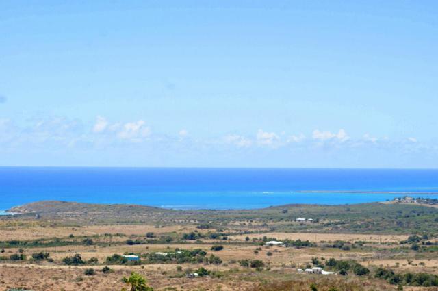 58 Bugby Hole Co, St. Croix, VI  (MLS #18-691) :: Hanley Team | Farchette & Hanley Real Estate