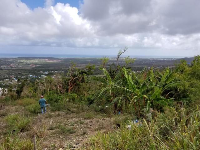 536 Mon Bijou Ki, St. Croix, VI 00820 (MLS #18-827) :: Hanley Team | Farchette & Hanley Real Estate