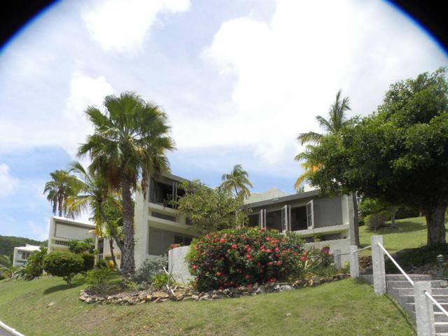 432 Teagues Bay Eb, St. Croix, VI 00820 (MLS #18-90) :: Hanley Team | Farchette & Hanley Real Estate