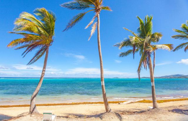 311 Golden Rock Co, St. Croix, VI  (MLS #18-932) :: Hanley Team | Farchette & Hanley Real Estate