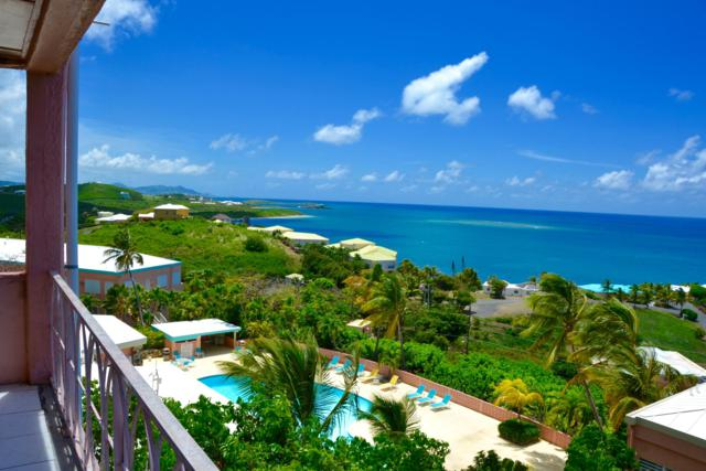 4 Coakley Bay Eb, St. Croix, VI  (MLS #19-1008) :: Hanley Team | Farchette & Hanley Real Estate