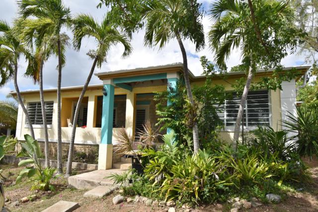 101 & 101A Two Brothers We, St. Croix, VI 00840 (MLS #19-1024) :: Hanley Team | Farchette & Hanley Real Estate