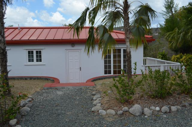 4 & 5A Montpellier Qu West, St. Croix, VI 00820 (MLS #19-1045) :: Hanley Team | Farchette & Hanley Real Estate