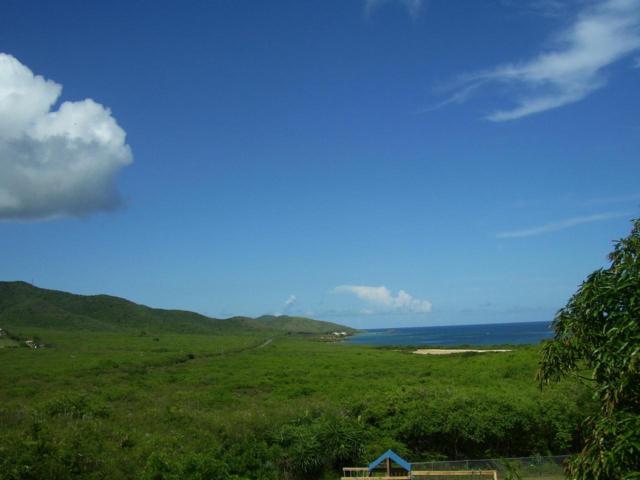 1 Great Pond Ea, St. Croix, VI 00820 (MLS #19-1047) :: Hanley Team | Farchette & Hanley Real Estate